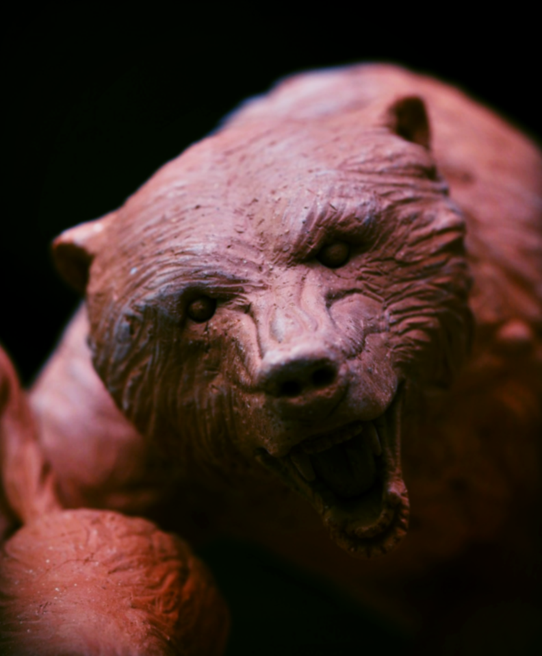 bear touch up.png