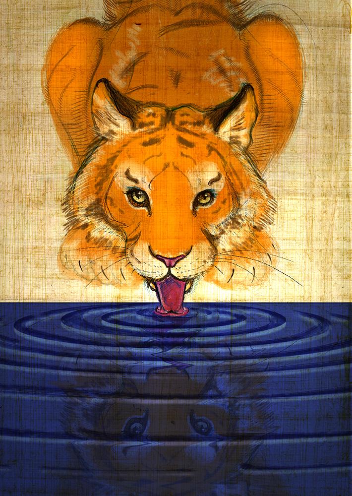 04 Tiger.jpg