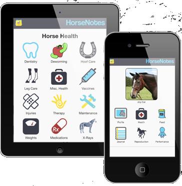 HorseNotes_3.png