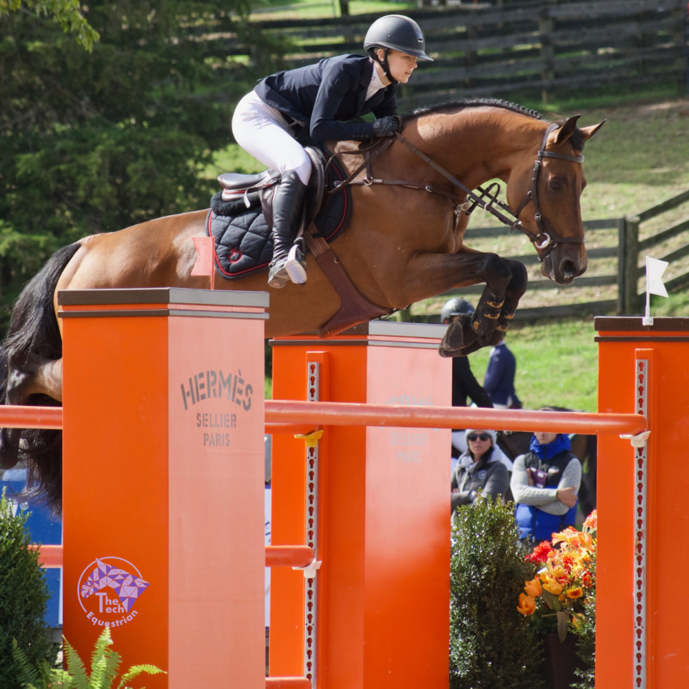 Davis and Caracho compete at The American Gold Cup at their home stable of Old Salem Farm in September.