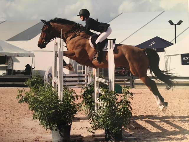 Silvain and her equine partner Zen L competing in the High Adult Jumpers at WEF.