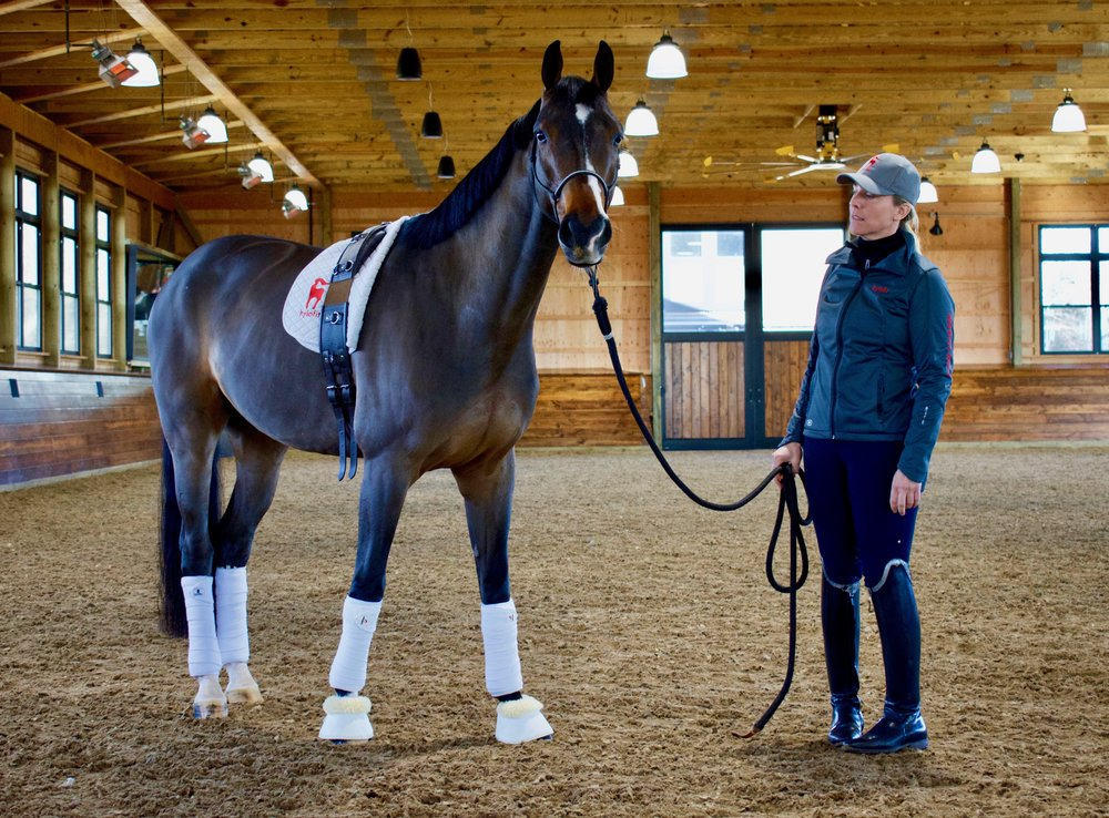 """""""For me Hylofit provides the data behind what my horse is actually thinking and what is actually happening with his body and allows me to confirm that maybe what I was thinking was right or oh, what I was thinking was the opposite.  The intelligence I get now with Hylofit versus without is like night and day,"""" said Eliane with Fellow , her horse of one year."""