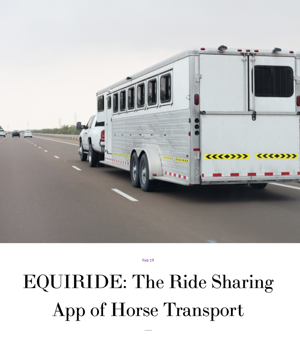 "#3 Equiride - ""We constantly get feedback from our users that they love the convenience and the service the app offers."""