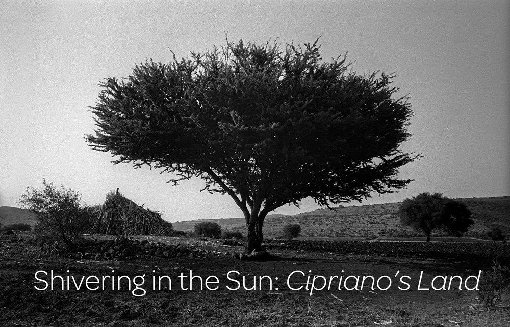 Ciprianos land title.jpg