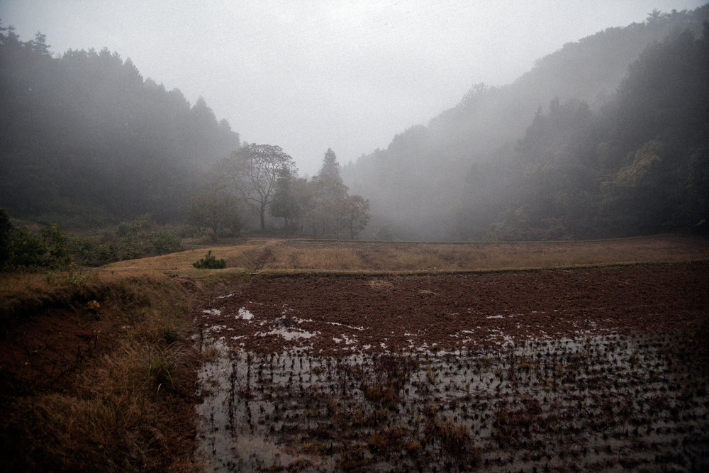 田も畑も 黙り込んでる ふるさとの 風が重たい 原発の空the rice paddies and the fieldsare left to lie fallowin my home townwhere wind blows in a heavynuclear power plant sky - 美原 凍子(福島県 2011年4月)Toko Mihara, Fukushima April 2011