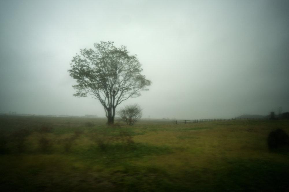 あてど無き 余生なりせど 安住の 終の住処を 夢見て眠るnot knowing how long I can live,with not much time remaining,dreaming ofa safe, final resting placeI sleep - 加藤 信子 (岩手県 2011年12月)Nobuko Kato, Iwate December 2011