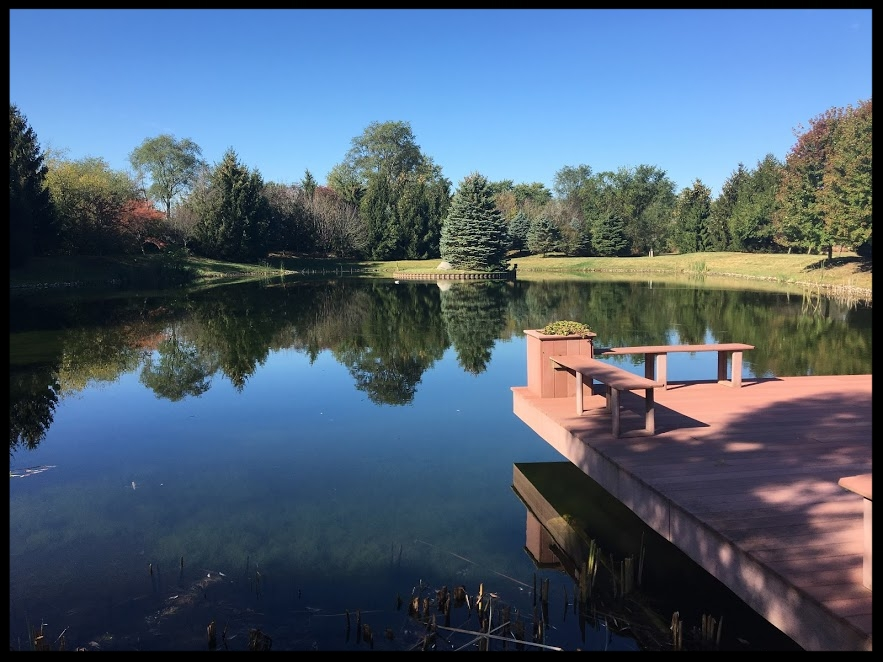 Excellent Lake and Pond Management  -            Even Better Results