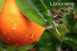 Limonene is responsible for the citrus aroma we smell.