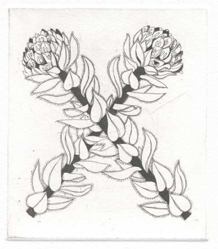 Fynbos A - Z  (Xiphotheca (Silver pea)) (2012)