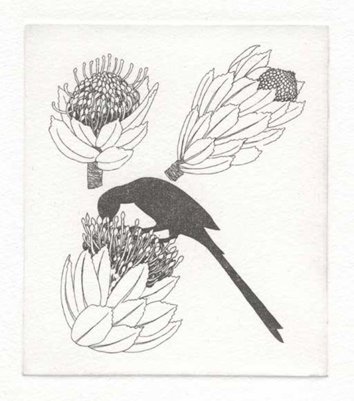 Fynbos A - Z  (Kreupelhout (leucospermum)) (2012)