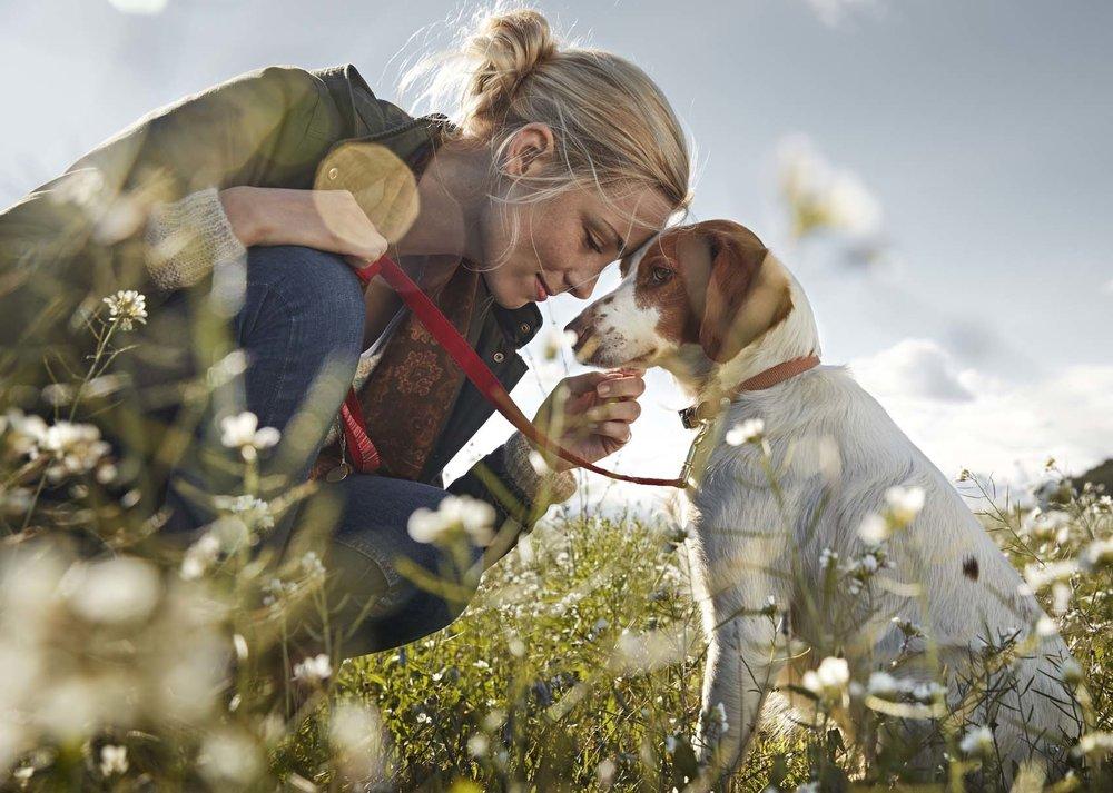 Julia innig mit Hund in Wiese
