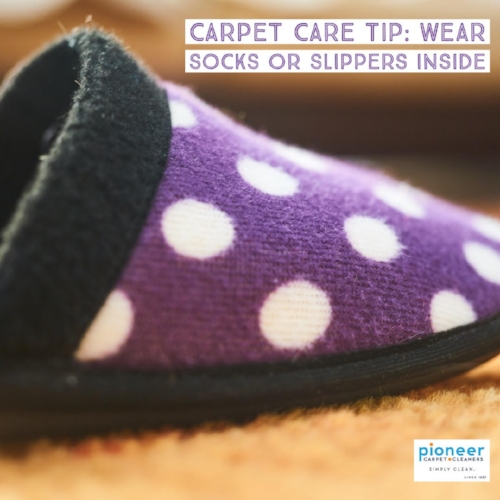 Carpet Care Tip Wear Socks or Slippers Inside.jpg