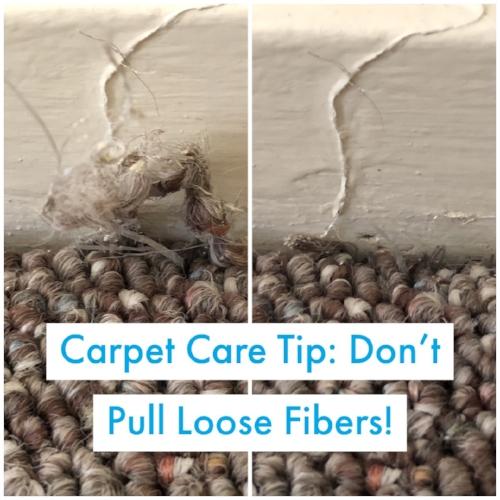 Carpet Care Tip_ Don't Pull Loose Fibers!.JPG