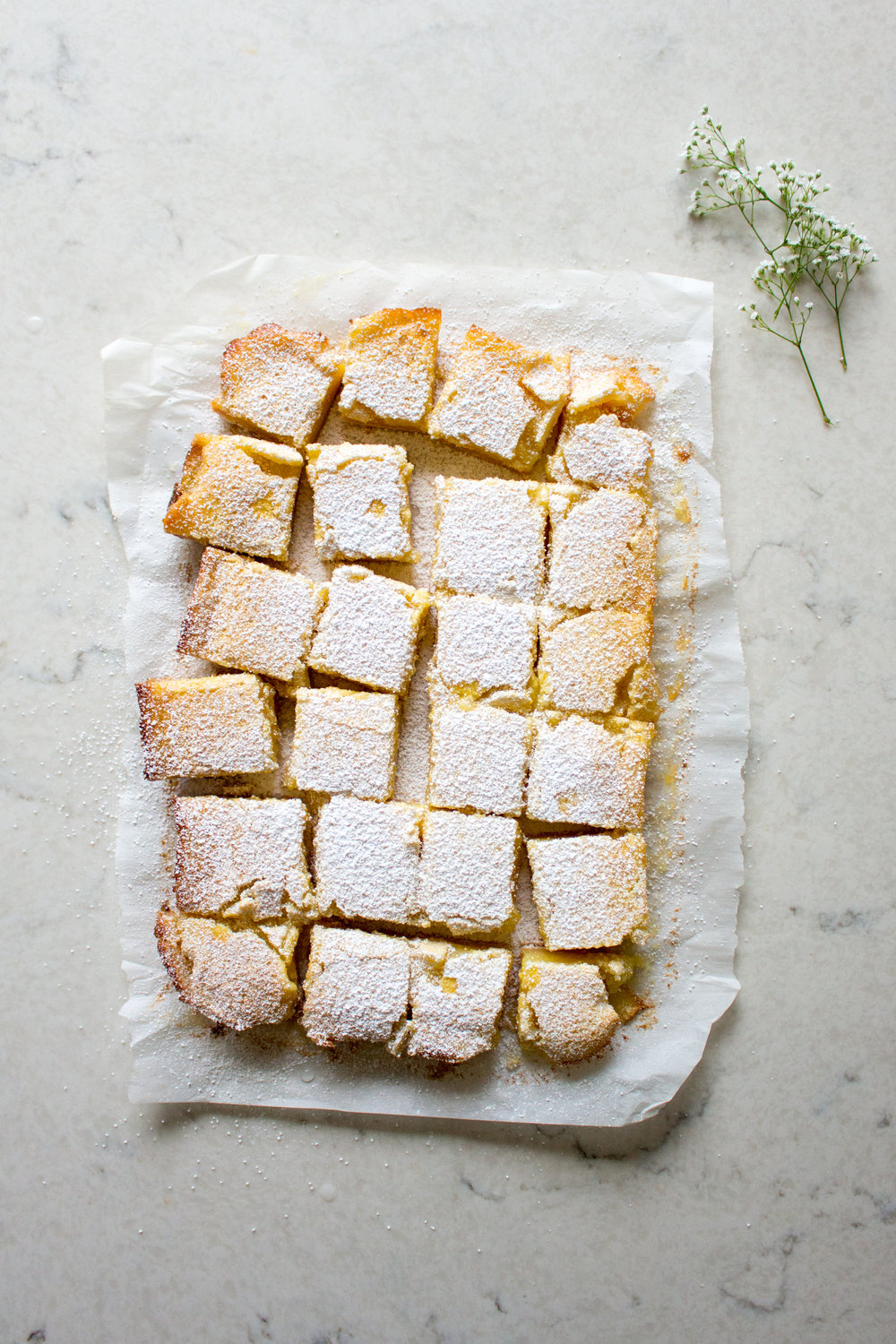 lemon bars-5.jpg