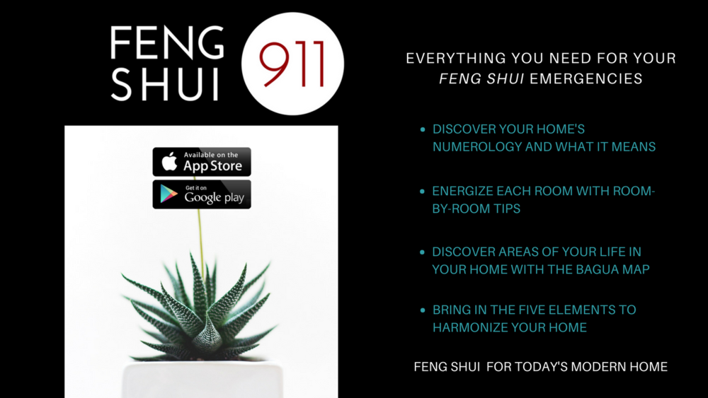 FENG SHUI FOR TODAY'S MODERN HOME.png