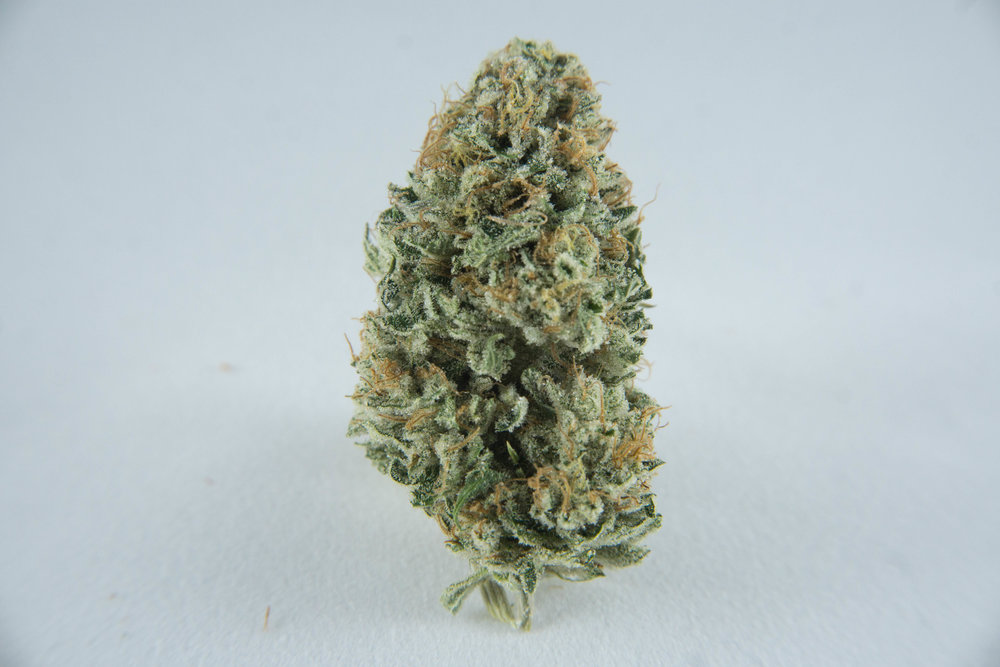 Hybrid (50% Sativa, 50% Indica) Crossed with Pineapple Express and OG ChemDawg (Dominant). Full-flavoured fuel on the inhale, citrus while you exhale. Piney scent. Wonderful toke for when you wish to get things done today but you're still aching from yesterday's workout.