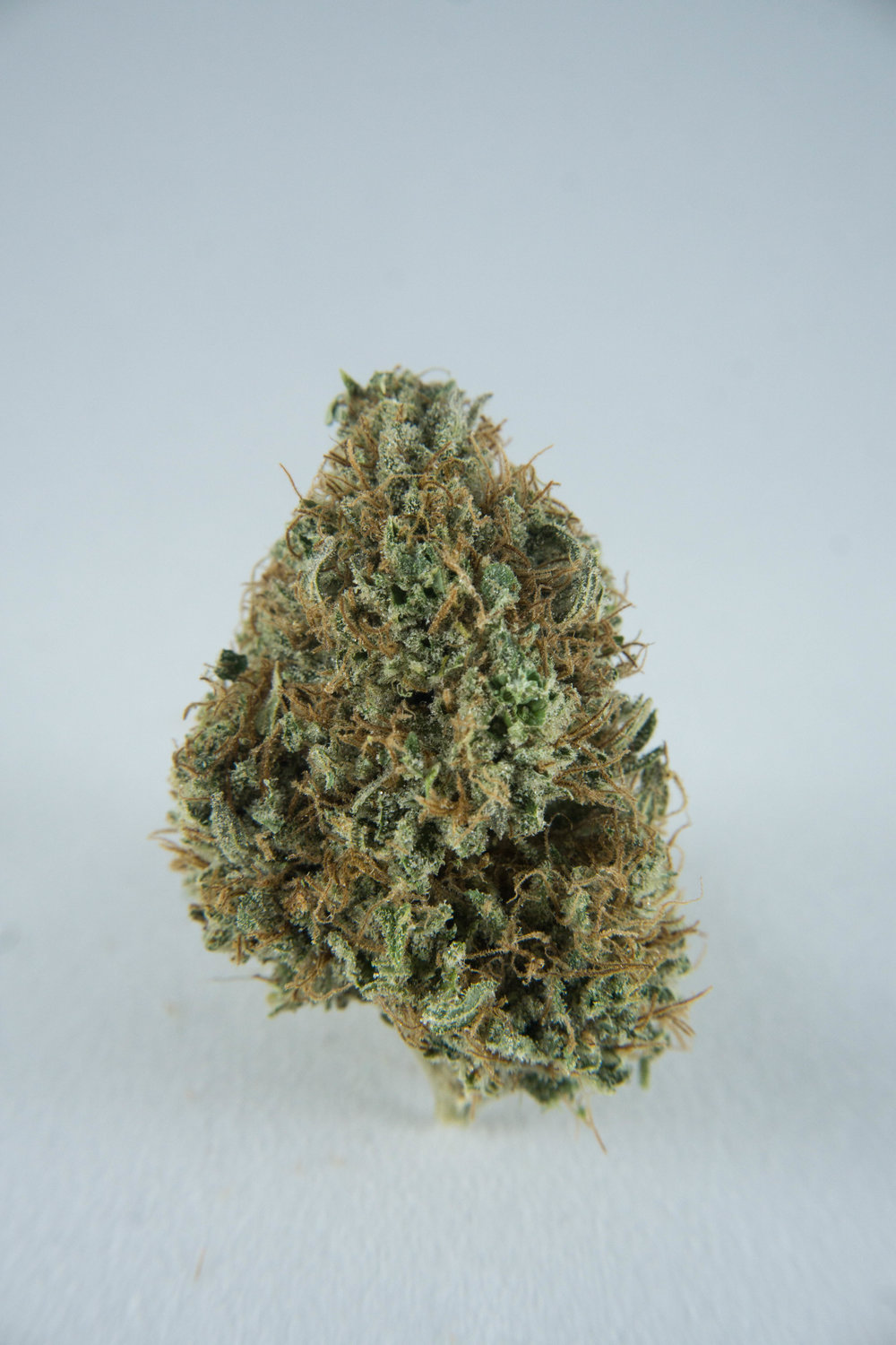 Longtime indica dominant strain that was well known in Girdwood throughout the last two decades. Comes on strong, a great regular choice for a heavy smoker, instant pain relief and euphoria, not for the faint of heart. Not to be confused with the many dogs in the area named after this famous strain