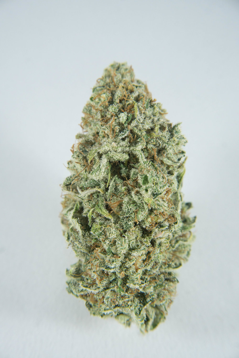 Hybrid (Indica Dominant) Crossed with Boggle Gum and KOS Blue Dragon. Tantalize your tastebuds with this classic fruit stripe gum flavour somehow covering your weed. This smell and flavour is going to blow your mind.