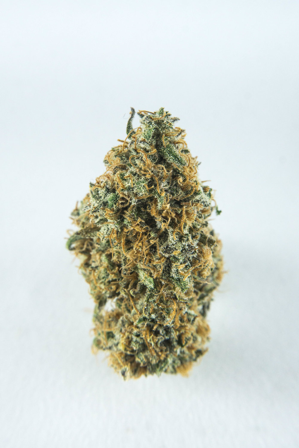 Hybrid (Indica Dominant). Originating from the United Kingdom, indulge your senses within this sweet, Afghani flower. If a skunk sprayed strawberry jam--this is what you'd be packing in your bowl. Earthy, sweet, and extremely pungent! Lovely for bringing about a very strong appetite.
