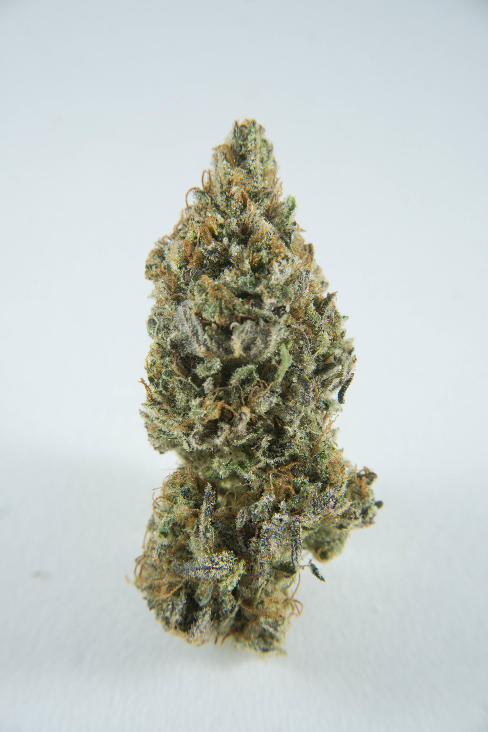 Hybrid (80% Indica, 20% Sativa).Crossed with Afghani Indica and Skunk #1.Tropical skunkiness. Very sweet, honeydew flavour and is extremely rich in CBD. Immediate relief for all your pain and worries. But you gotta fight to stay awake (or you know, it's great for insomnia). Get ready for the dozed off stares.