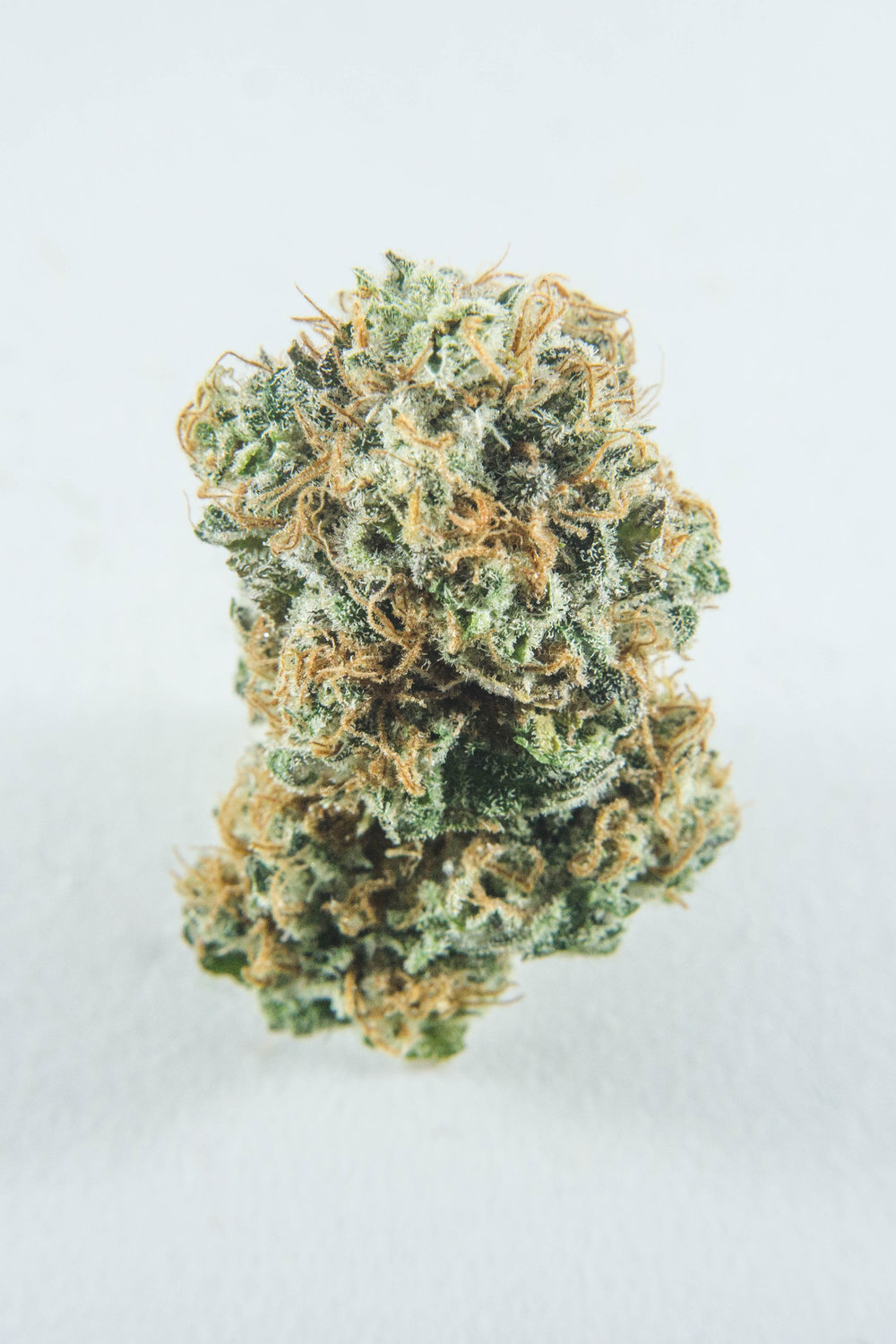 """Purely Sativa (100% Sativa) Haze-spice flavour profile with citrus notes to delight your senses. To put it bluntly, it is a dank smell. Durban Poison is said to derive from South Africa but is also questioned whether the seeds came from Amsterdam. Raved over its """"head lift"""", Durban Poison will leave you with a clear and level-headed high."""