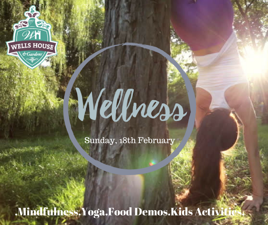 Wells for Wellness Image1_preview.png