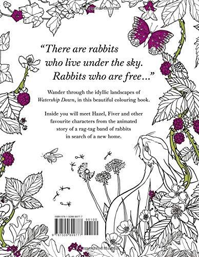 Back Cover_Sophia O'Connor.jpg