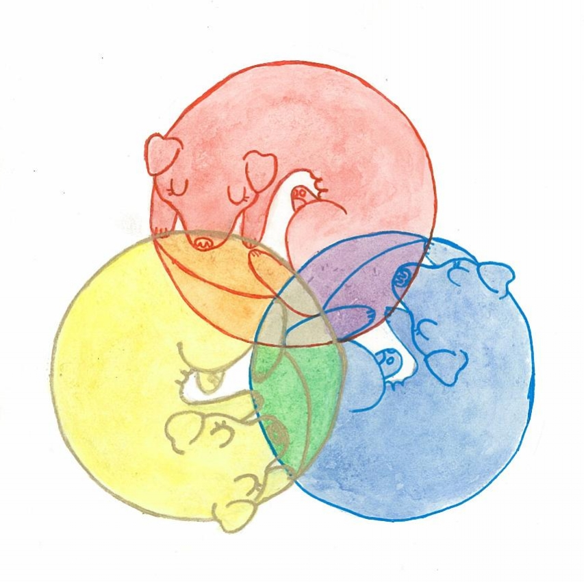 Rainbow Doggos
