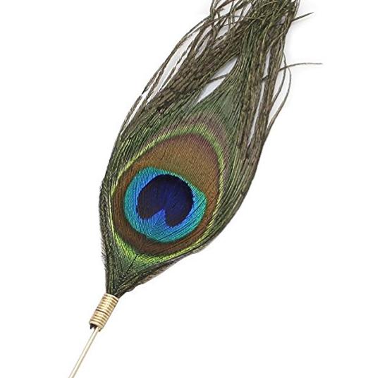 6088b-peacockpin.png