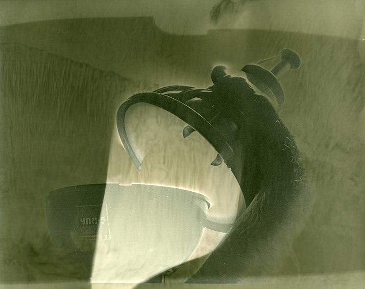 solarisation, 2009