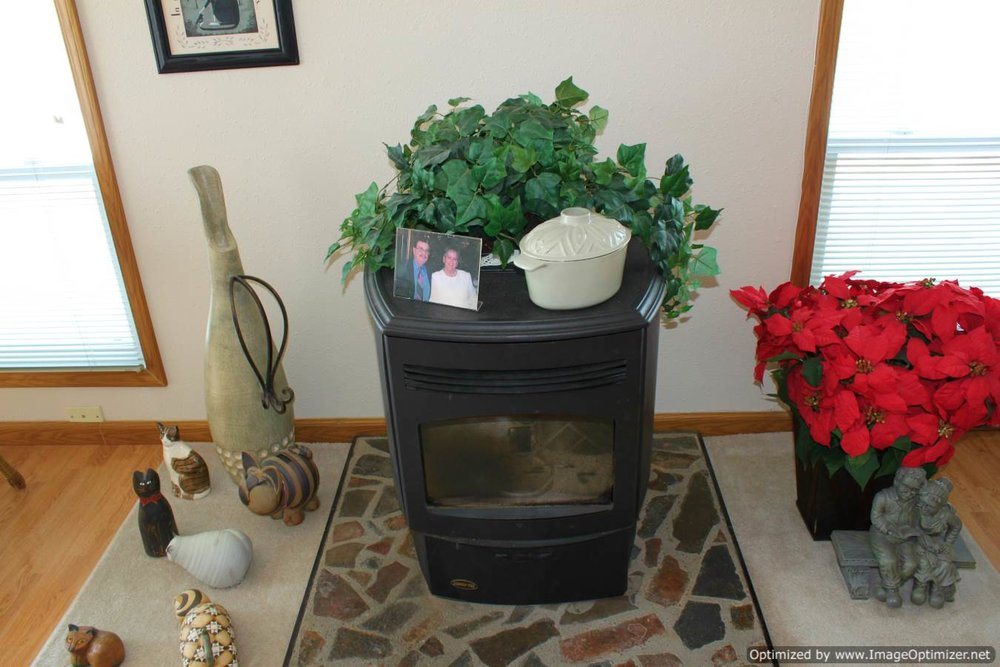 living room pellet stove-Optimized.jpg