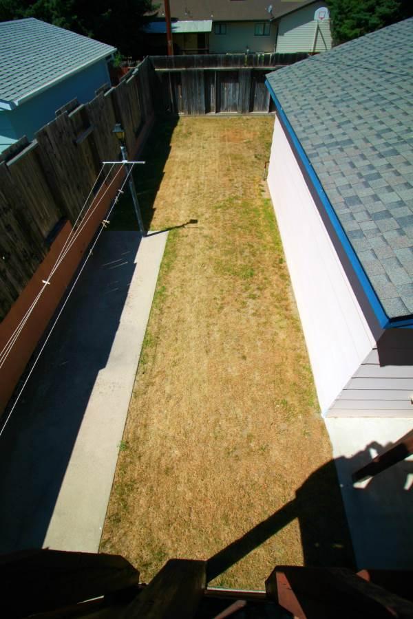 Yard- from deck-Optimized.jpg