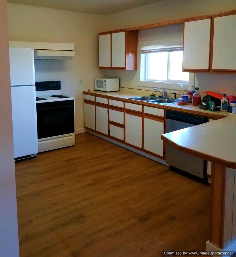 remodel kitchen-Optimized.jpg