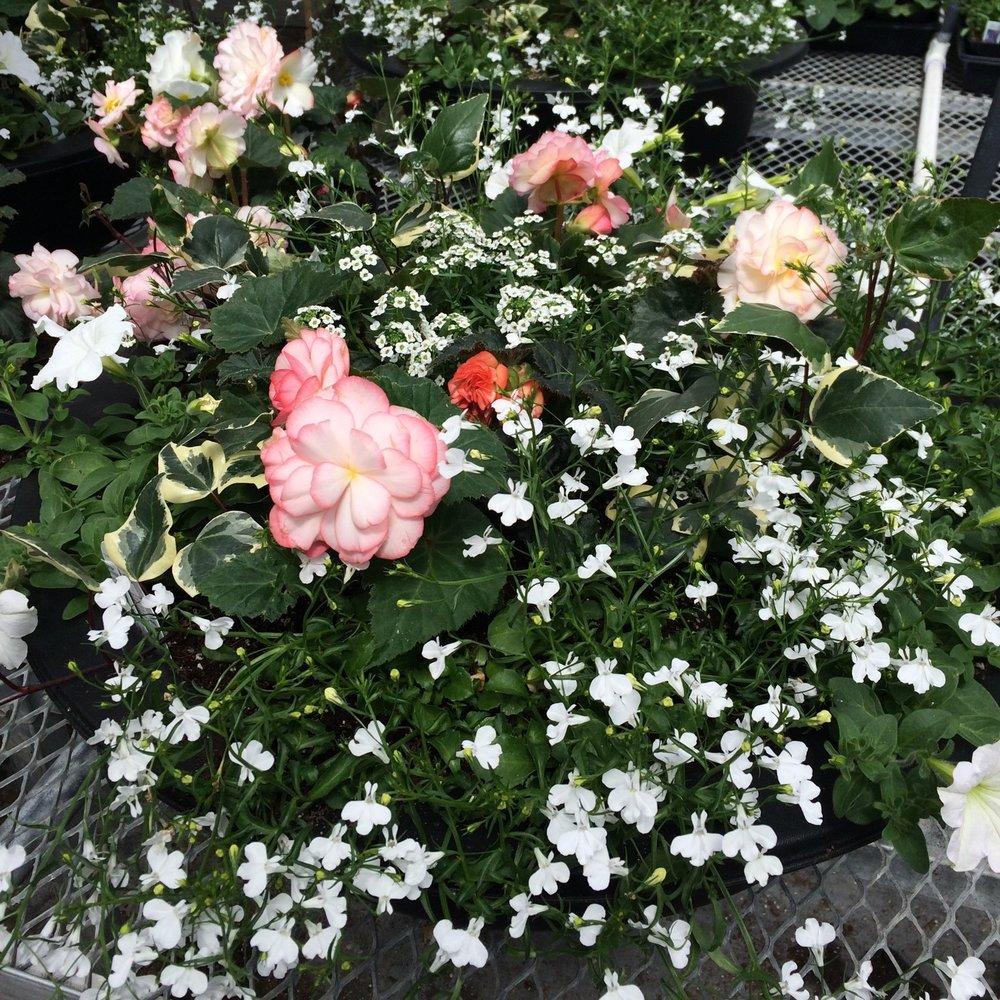 wedding planters 2.jpg