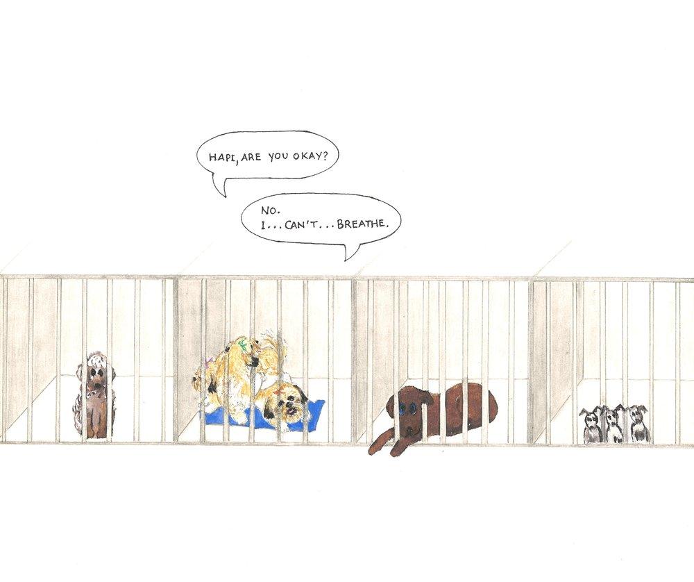 DogPound Dogs.jpg