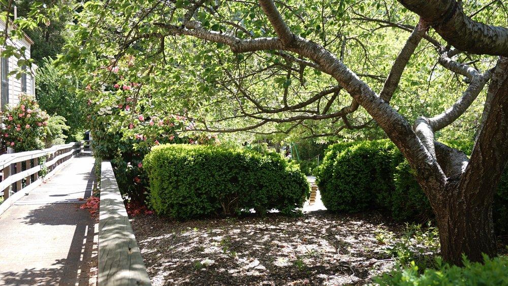 Warburton Gardens
