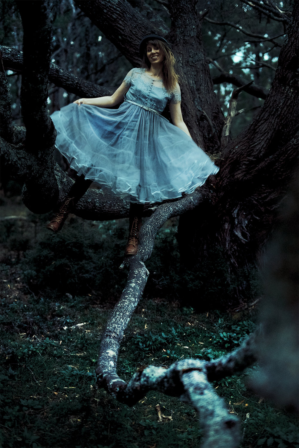 A girl in a tree who is Alice