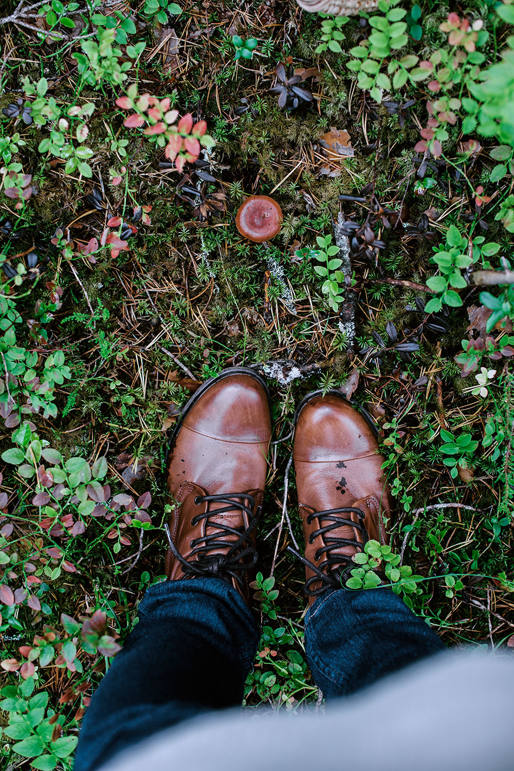 Brown boot and a brown little mushroom