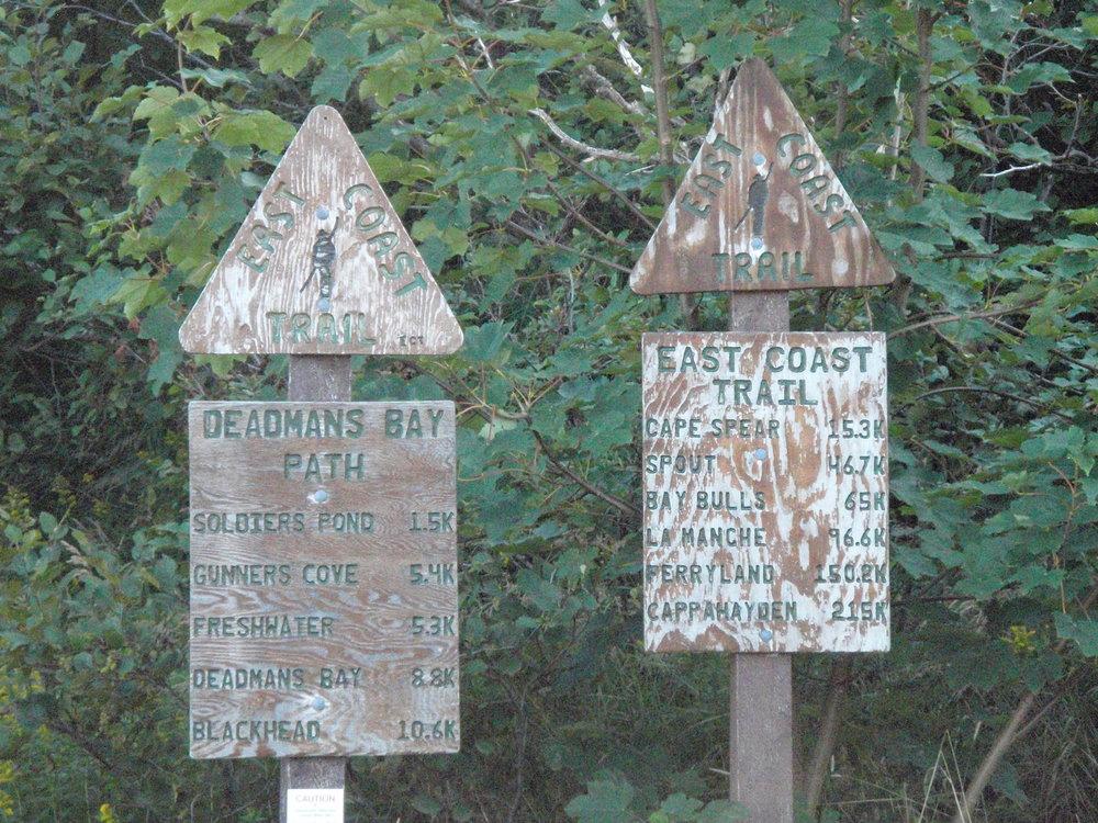 East Coast Trail Randonnée pédestre - Hiking experience