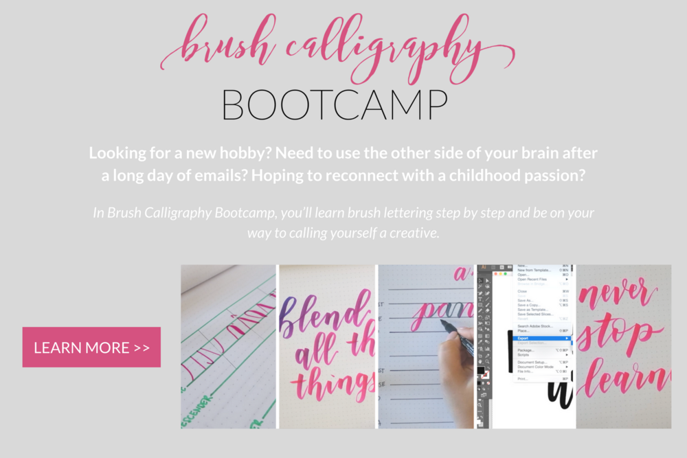 brush bootcamp.png