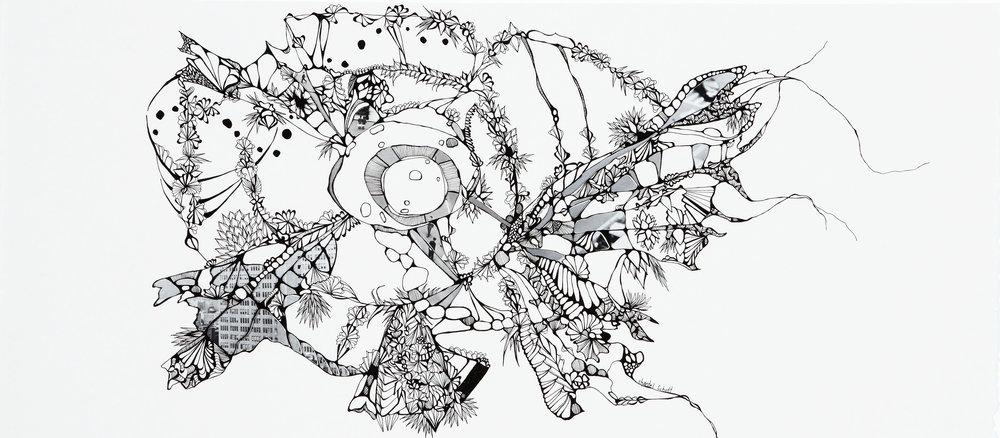 Lucidus by Chantel Schott