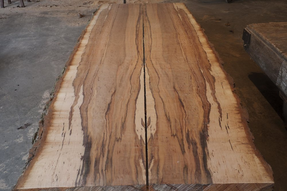 10 foot maple #3.jpg