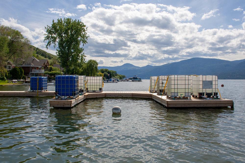 OKPD-Docks-May-2018-52.jpg