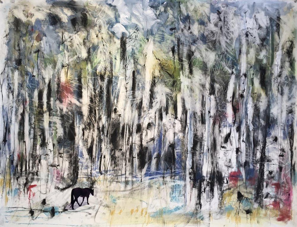 Forest Walk {Chico} 2018