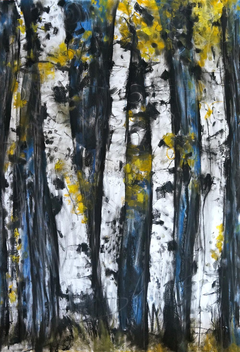 Blue Yellow Birches