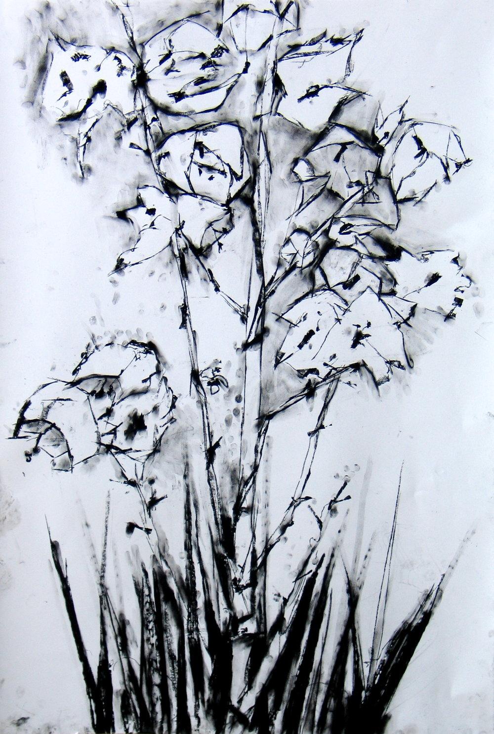 Okanagan Floral