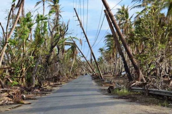 Damaged power lines along a road in Humacao, Puerto Rico show some of the damages in one of the hardest hit municipalities after Hurricane Maria on Oct. 28, 2017. (Joshua L. DeMotts)