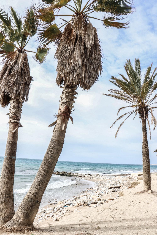 Marbella beach Spain by Linda Haggh.jpg