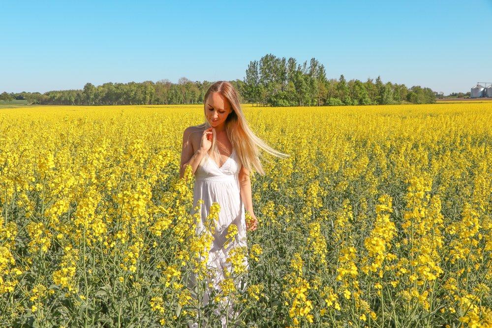 Swedish summer photo Linda Haggh.jpg