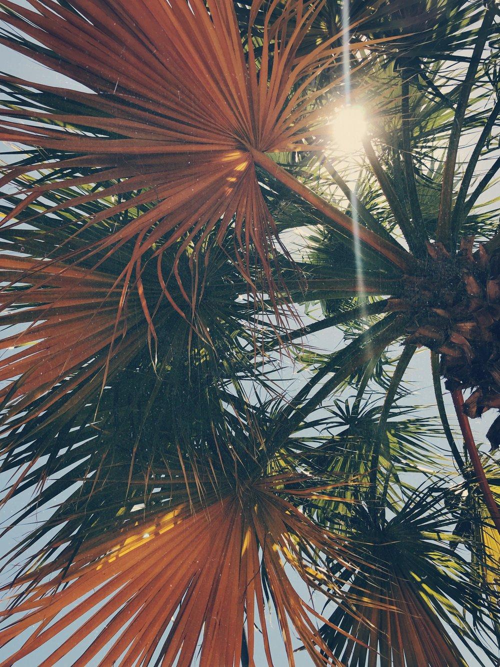 view www.lindahaggh.com.jpg